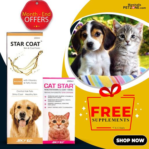 Month Long Supply Of A Pet Supplement On Bills Worth Rs 2020 Or More Shopping For Pet Needs Has Never Been This Rewarding Keeping In 2020 With Images Buy Pets Pets Food Animals