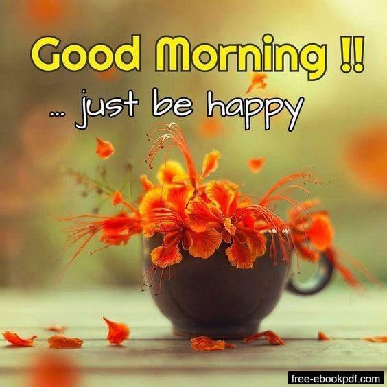 Free Good Morning Greetings Good Morning Greetings Good Morning Flowers Good Morning