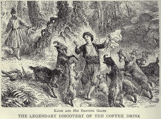 Coffee a brief history how it gets to your cup and what do those labels mean  The Art of Simple