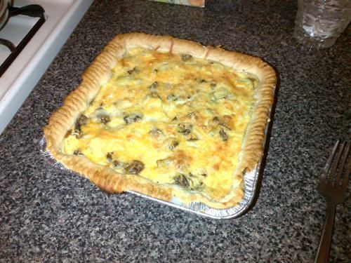 Our first homemade quiche. Dough from trader joe's, with artichoke hearts and mushrooms. We gave it a B+