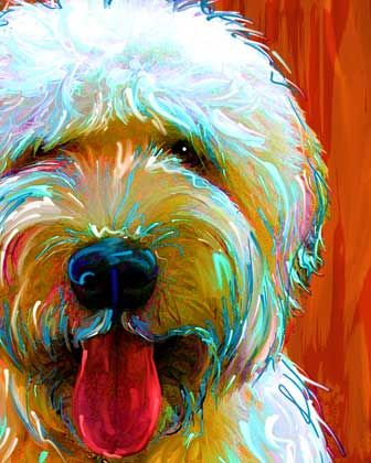 Pet Portraits by Rebecca Collins ~ Llasa Apso - I LOVE the colors in the painting!!  So cute