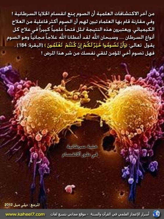 Pin By عمر الانصاري On شكرا Islamic Information Health Fitness Food Shia Islam