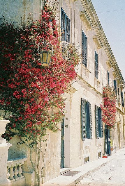 Mdina, Malta, once the capital of Malta, lies on  a hil and is a must see when travelling to Malta. No cars allowed within the city walls, so perfect for afternoon strolls.