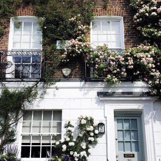 Chelsea, London | iamsuleymanovic