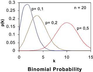 Probability distribution essay