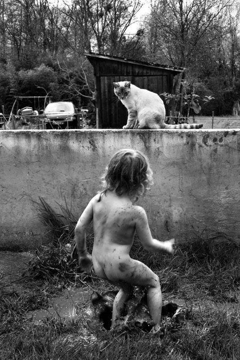 The Cat Ladies, Alain Laboile