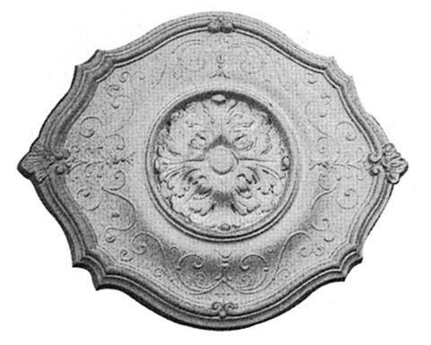 SCR26 #ceilingrose