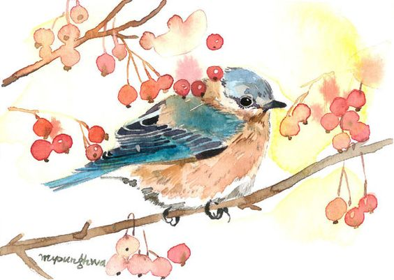 ACEO Limited Edition 1/25- A glance, Bluebird and berry, Art print of a…