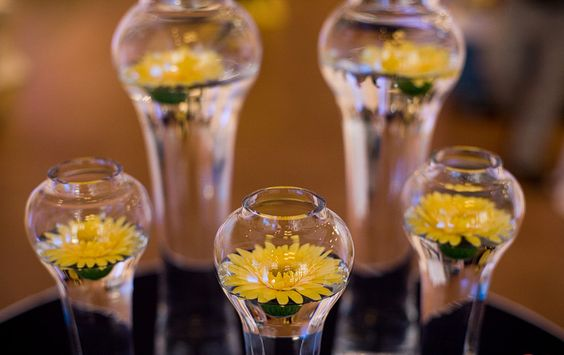 Simple and modern summer arrangements using gerber daisies and contemporary glass vases.