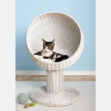 $84        $119 retail price      Quantity      Add to Cart    If Whiskers loves hanging out in high places, the Cat Ball Chair can provide her a sweet above-ground respite all her own. Made from poly rattan, this accessory features a modern, rounded design that sits off the ground, but is easy for your feline to get into. This Cat Fancy 2011 Editors' Choice pick is a pet bed that your kitty will adore and you won't be embarrassed about having in your home.
