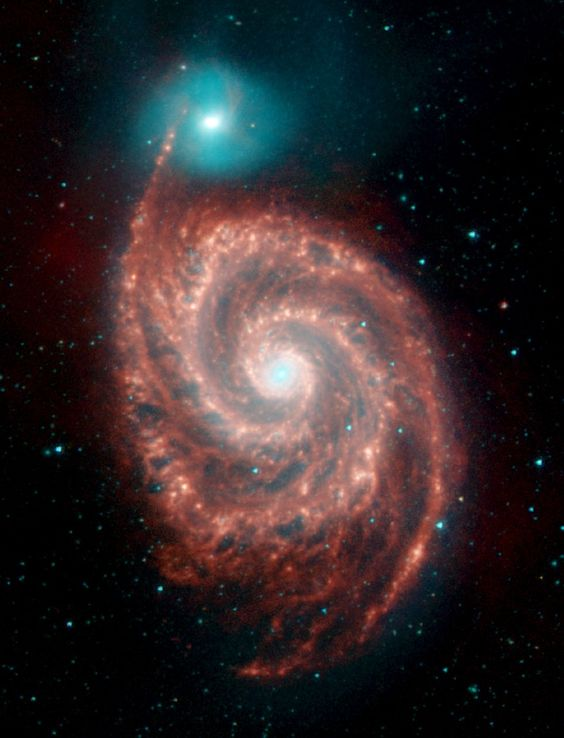 WHEN GALAXIES COLLIDE  The Whirlpool Galaxy, the red spiral, and its companion galaxy, NG 5195 are 23 million light-years from Earth - that's relatively close. IRAC shows the warm dust in red, a sign of active star formation probably triggered by a collision between the two galaxies.
