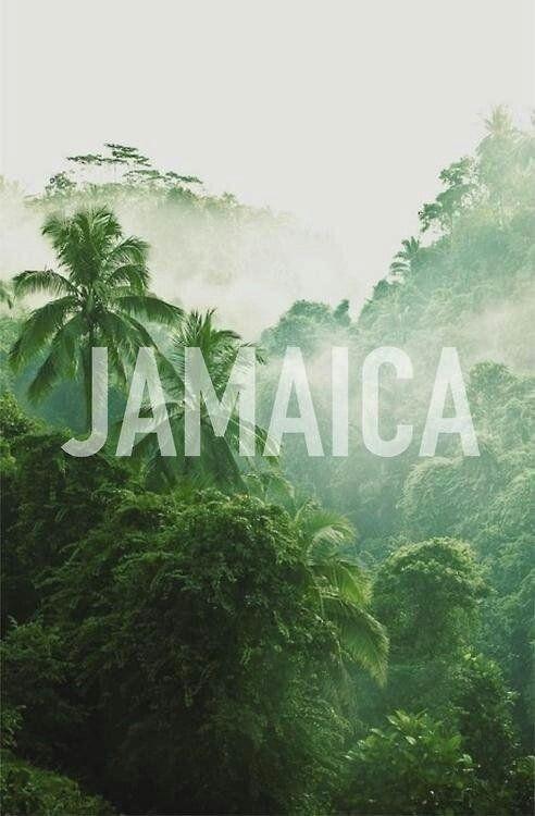 Go to Jamaica. .