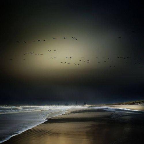 Night light  By © Piet Flour