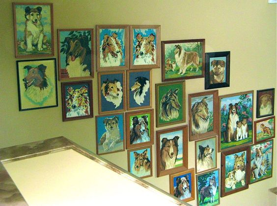 Cute collection of #pbn collies displayed on a stairway.