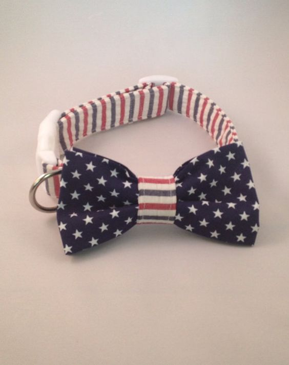 Preppy Red White and Blue Seersucker Bow Tie Dog by thesouthernpup