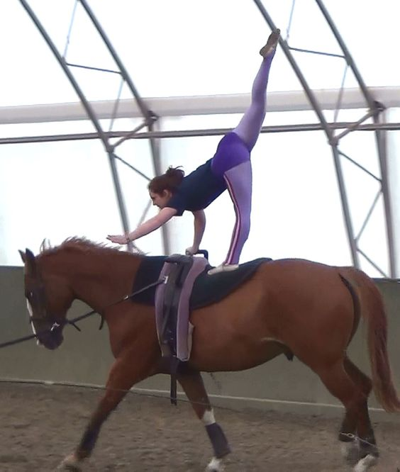 Vaulting, I always thought this would be amazing to do, but I dont think I have the skill :p