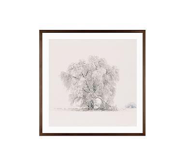 """Winter Tree by Jennifer Meyers, 25 x 25"""", Wood Gallery, Espresso, Mat"""