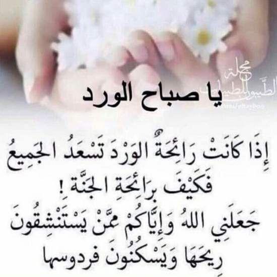 صور صباح الخير واجمل عبارات صباحية للأحبه والأصدقاء موقع مصري Good Morning Arabic Good Morning Friends Quotes Beautiful Morning Messages