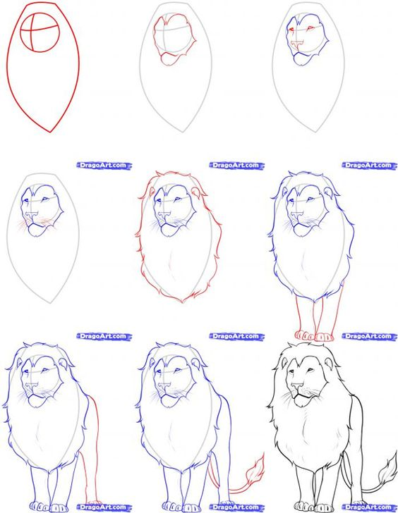 How To Draw Realistic Animals