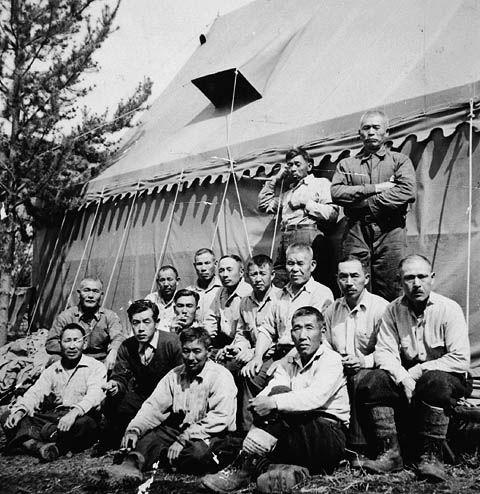 japanese internment during ww2 Japanese-american internment camps a historical fact that is not really common knowledge is the fact that, during world war ii, over 100,000 japanese-american individuals, the vast majority of which were actually american citizens, were rounded up and shipped eventually to internment camps.