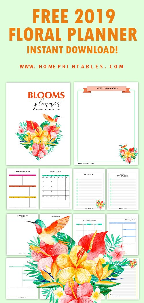 download beautiful 2019 monthly calendar and floral planner with over 40 printable pages to love! #2019 #planner #planner2019 #freeprintable 2019 CALENDAR FREE PRINTABLES SOYVIRGO.COM