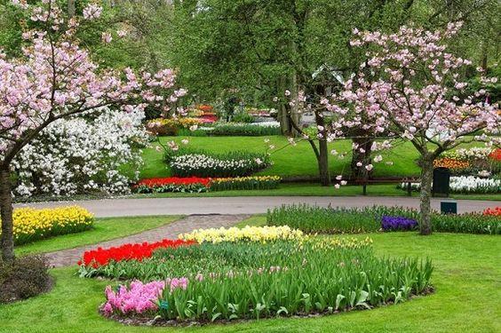 Há século as flores são utilizadas na decoração, elas transmitem diversas sensações, acalmam e embelezam o espaço. Aprenda a cultivar as flores de inverno.