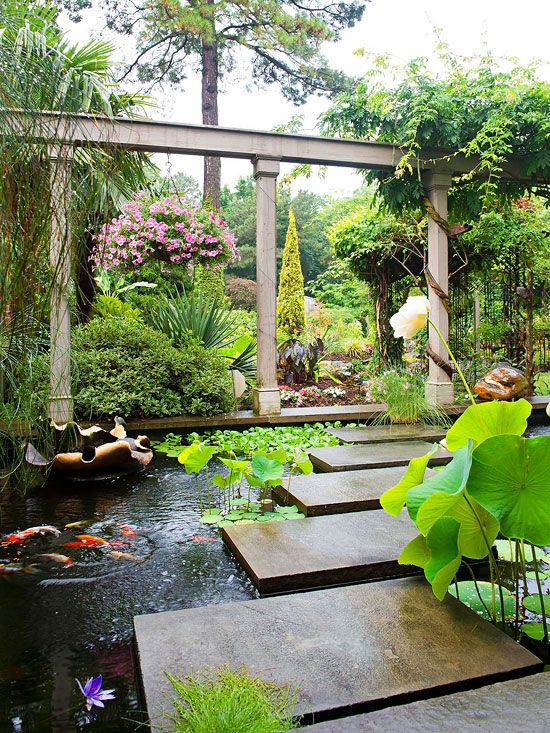 Ponds koi ponds and koi on pinterest for Large outdoor fish ponds