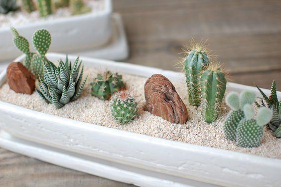Hermosa jardinera blanca con cactus crasas y piedras - Jardines con cactus y piedras ...