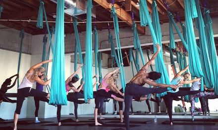 Professional instructors teach aerial fitness, which is tailored to athletes of all ability levels