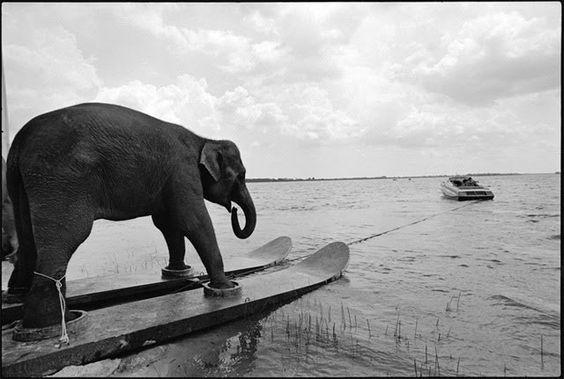 Las impresionantes imágenes de la fotógrafa estadounidense Mary Ellen Mark