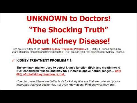 Natural Treatments to Reverse Kidney Disease Problems