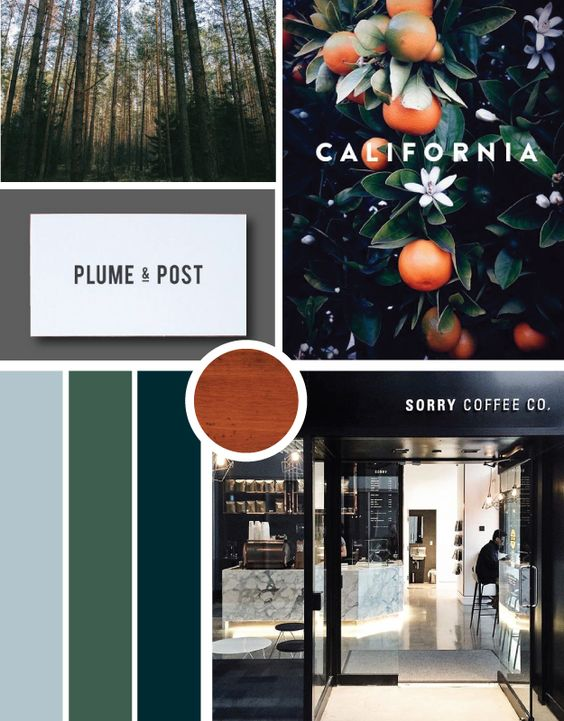 WIth crushed blues, blacks, and deep spruce colors, this moodboard has been super fun to work on. Playing with text overlays on images and the weight of type contrast, I love the minimal nature of the project. Using imagery shot in the redwoods this week it will be the anchor imagery for the website. Be looking for a palette of great neutrals, mahogany wood textures, and saturated colors.