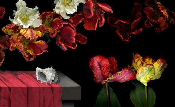 cuadros-de-flores-para-dormitorios