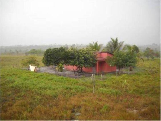 Excelente fazenda no sul da Bahia  à venda.