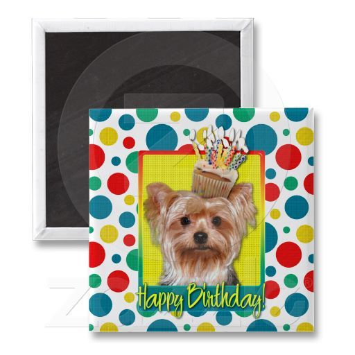 Birthday Cupcake - Yorkshire Terrier Refrigerator Magnets