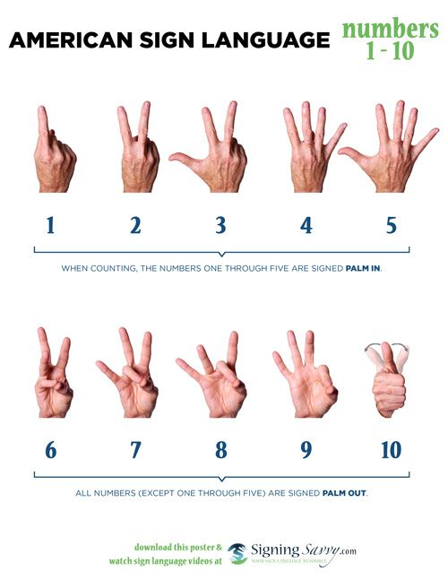 American Sign Language Asl Numbers 1 10 Sign Language Words Sign Language Phrases Sign Language Alphabet