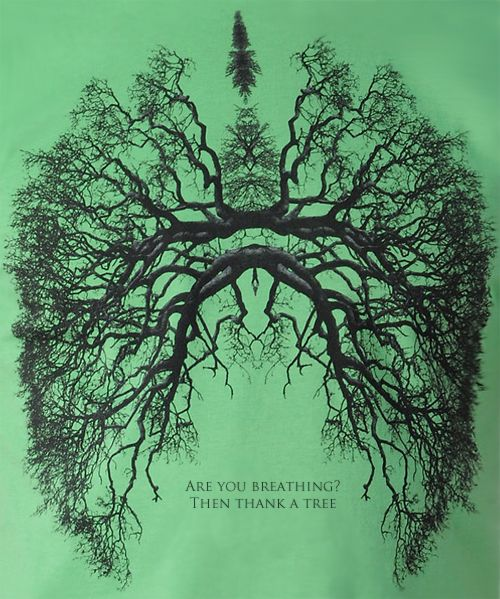 are you breathing?  then thank a tree.