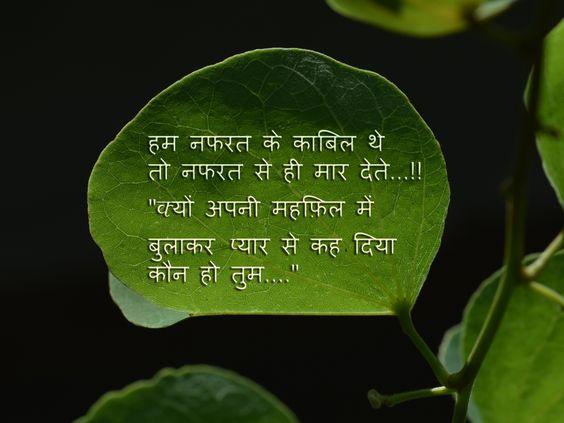 emotions hindi shayari golden leaves pinterest