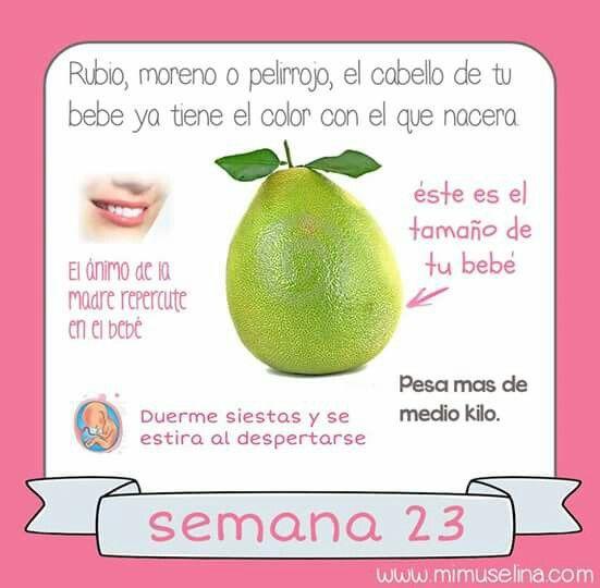 Pin De Tatiana Soto En Embarazo Con Imagenes Embarazo 23