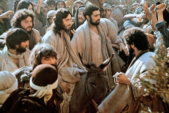 "Some of the Pharisees in the crowd said to him, ""Teacher, rebuke your disciples.""He said in reply, ""I tell you, if they keep silent, the stones will cry out!"" -Luke 19:39-40(NABRE)"