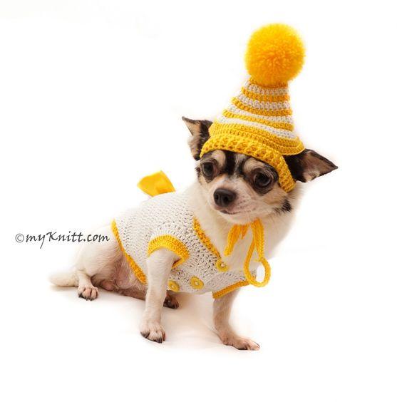Teddy Bear Cute Amigurumi Dog Clothes with Hat DF89 by Myknitt