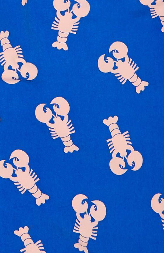 Kids Lobster Print Swim Trunks Nordstrom In 2021 Printed Swim Swim Trunks Boys