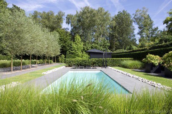 Buitenzwembad in minimalistische tuin starline zwembad for Zwembaden in tuin