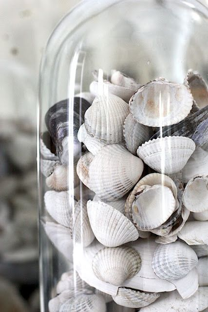 I have jar of shells just like this in my office...things from nature are very soothing...and great for use in metaphors.