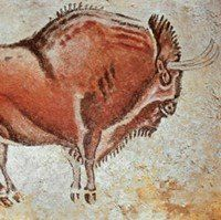 Painting of a Bison (c.15,000 BCE)  From the Altamira Cave Complex - Spain