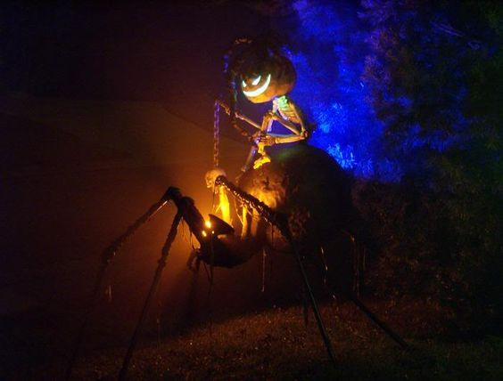 spiderriderhalloween - zlalomz
