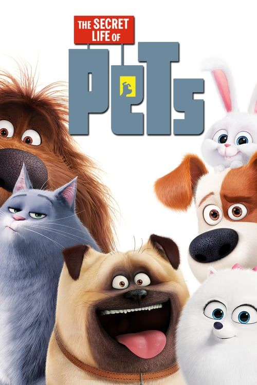 Guarda The Secret Life Of Pets 2016 Streaming Ita Completo Hd Italiano Secret Life Of Pets Pets Movie Secret Life