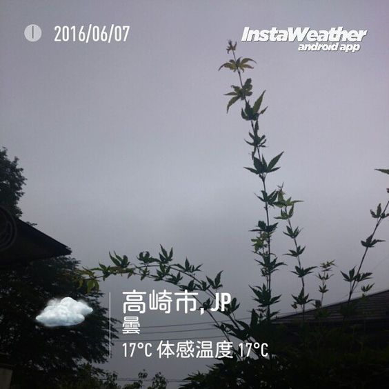 おはよーございます夜中のうちに雨が降ったようでベランダが濡れています  #gunma #takasaki #群馬県 #高崎市 #みんなのIT #なみぶたどっとねっと #namibuta