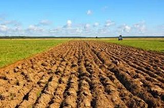 Important to consider the soil in farming! #perfection #soil #farm by microbiometer