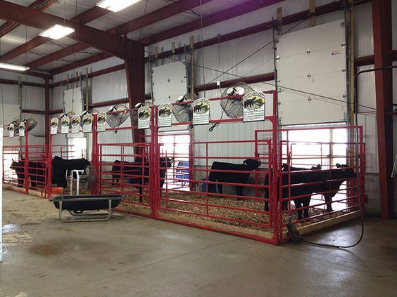 Show Barn Showcase | Orchard View Farm, OH